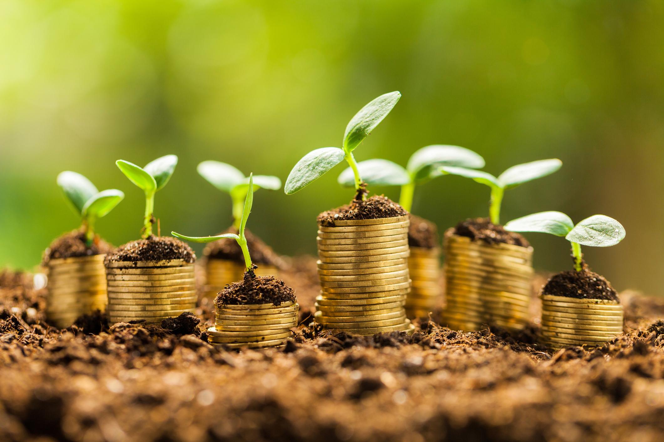 CashKeeper gestión de efectivo